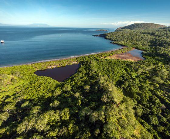 Isla Santiago cruicero Galapagos