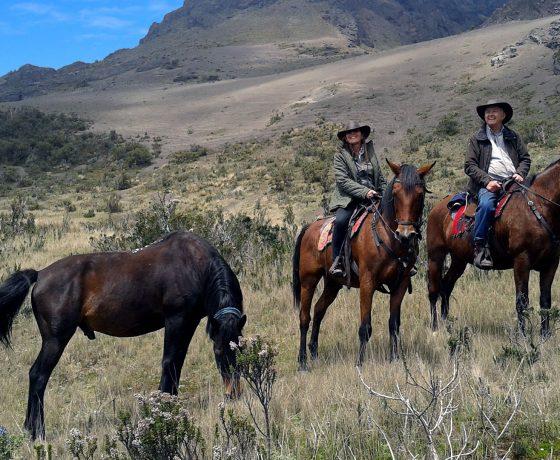 Cabalgata Cotopaxi Ecuador tours