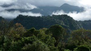 Mindo ecuador tour
