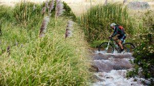 Ciclismo Pululahua