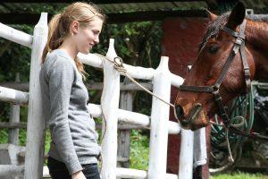 hosteria papagayo cotopaxi caballos