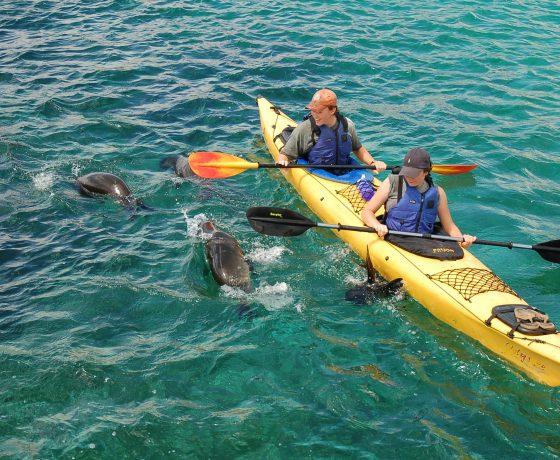 Multisport Aventuras Galapagos