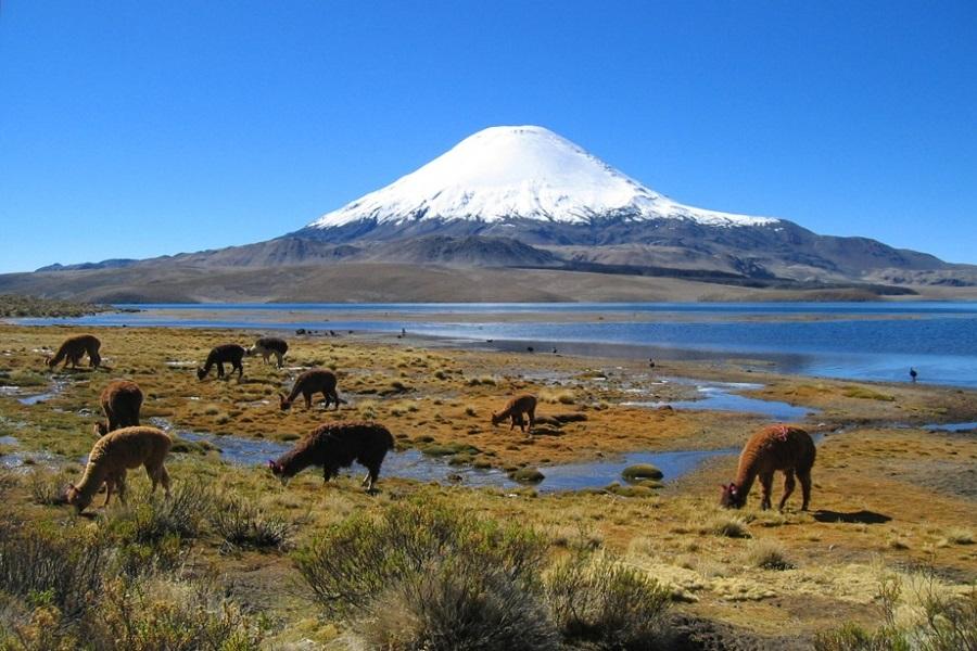 Top 5 Montañas mas altas de Bolivia